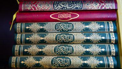 Photo of اللغة العربية لغة الضاد