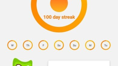 دولينجو duolingo تطبيق تعلم اللغة الإنجليزية
