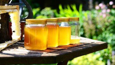 عسل النحل علاج لقرحة المعدة و مشاكل الجهاز الهضمي