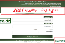 bac.onec.dz الديوان الوطني للامتحانات والمسابقات
