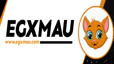 ما هي Egyptian MAU ؟ وما هو مشروع EGX MAU ؟